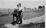 Couple With Mule