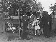 Sesquicentennial - Tree Planting