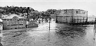 Flood - November 1985 - 9th Street