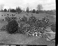 : evelyn walton grave, january 23