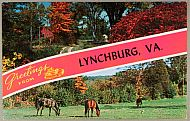 : greetings lynch jg