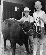 : Farm show prize bull