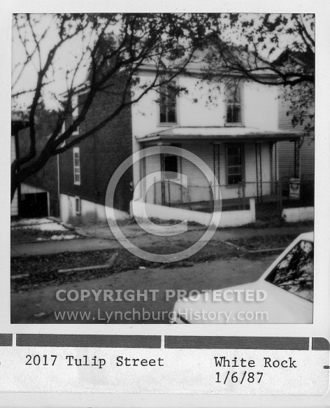 : 2017 Tulip street