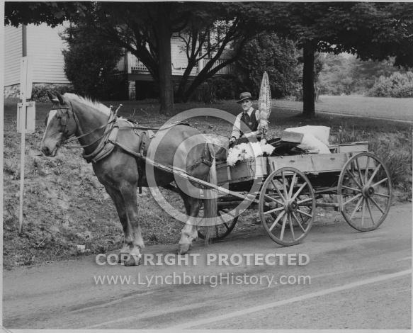 : Man horse cart flowers MH 51