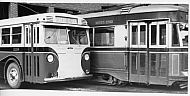 : Trolley & Bus