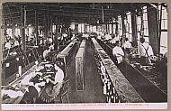 : Factory Crad ter cuttiing rm jg